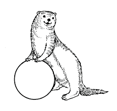 Otter Coloring Pages Fresh Otter Coloring Pages Print Animal More