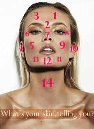 Acne Placement Chart What Your Acne Is Telling You Zone 1 3 Bladder