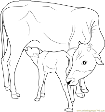 Small Picture Indian Cow with Calf coloring page Free Printable Coloring Pages