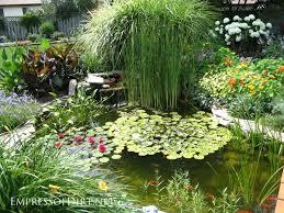 garden pond ideas. Simple Garden Beautiful Backyard Pond Ideas For All Budgets  Medium Size Inground Garden  With Water Lilies And Garden Pond Ideas U