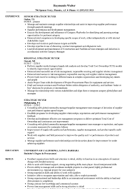 Buyer Sample Resume Strategic Buyer Resume Samples Velvet Jobs 21