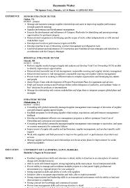 Buyer Resume Sample Strategic Buyer Resume Samples Velvet Jobs 38