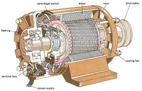 cutaway of a fractional horsepower single phase induction motor as used in many light industrial applications this motor has a squirrel cage rotor which