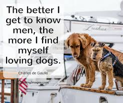 Quotes About Dogs Love Mesmerizing 48 Dog Quotes For People Who Love Dogs SayingImages