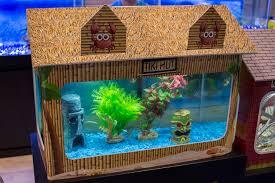 Fun Fish Tank Decorations Global Pet Expo 2017 In Photos Part Ii