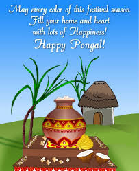 Image result for pongal images english