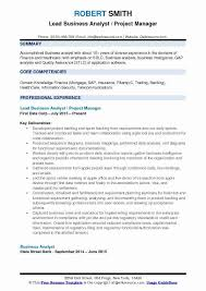 Business Analyst Resume Amazing Mdm Business Analyst Resume Cool Domain Knowledge In Resume