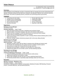 Famous Resume Accounts Manager India Contemporary Example Resume