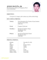 Curriculum Vitae Sample Doc Sample Resume Format Sample Resume