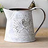 Decorative Pitchers Amazon Best Sellers Best Decorative Pitchers 97