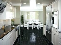 modern galley kitchen design. Modern Galley Kitchen Design Style Remodel Ideas