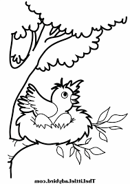 coloring nest page singular mother bird feeding cute baby in the en printable pages kids