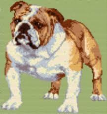 latch hook rug pattern chart english and 50 similar items englishbulldog