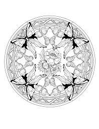 Colorare Mandala Disegno Quattro Farfalle E Un Fiore