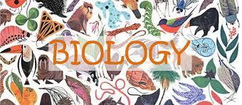Image result for Biology images
