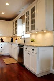 A Modern Ice White Shaker Cabinet really brings out the best in a Kitchen  Remodel.