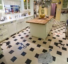 linoleum kitchen crazy fun contemporary kitchen