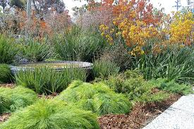 Small Picture Redrake Garden and Landscape Design