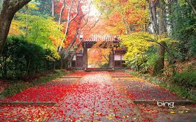 Autumn In Japan Japanese Landscape Landscape Wallpaper