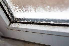 window mold