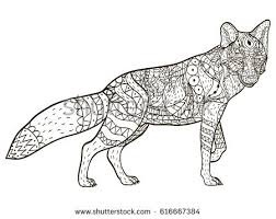 Small Picture Fox Coloring Book Coloring Pages