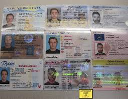 Fake Ids For Political Years Purchasing Vandy Vanderbilt The Review Their – Quest First amp; Fake