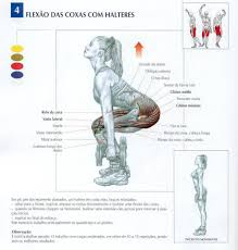 Resultado de imagem para flexões de pernas
