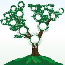 famiy tree family trees from simple to beautiful display the work of the