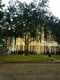 raining amazing would this look hanging from the trees in an tree lights outdoor wedding hang