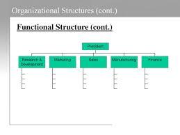 Pharmaceutical Company Organizational Chart