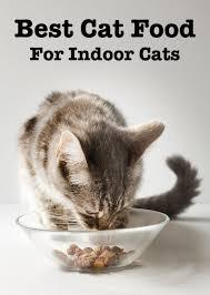 best cat food for indoor cats