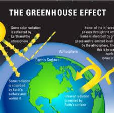 antonioni centenary essays esl descriptive essay editor services explain global warming crossfit bozeman