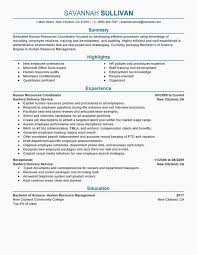 44 Resume Template With Graphics Training Resume Format Resume Example
