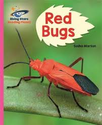 Reading Planet - Red Bugs! - Pink B, Galaxy by Sasha Morton | 9781510486430  | Booktopia