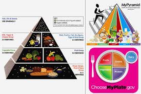 food pyramid 2015 kids.  Pyramid Inside Food Pyramid 2015 Kids