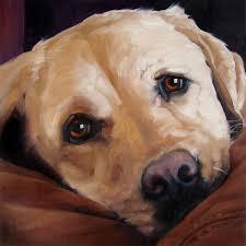 biglove moose custom pet portrait oil painting by puci 8x8