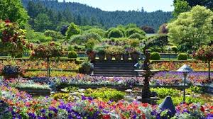 butchart gardens tours. Interesting Gardens Butchart Gardens  To Tours S