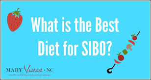 Sibo Diet Chart What Is The Best Diet For Sibo Mary Vance Nc