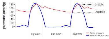 Heart Systolic And Diastolic Chart Map Calculator Mean Arterial Pressure Formula Omni