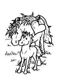 Kleurplaat Paard Met Veulentje In De Wei Kleurplaatjecom