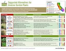 plantright s 2016 list of suggested alternatives for invasive garden plants in california