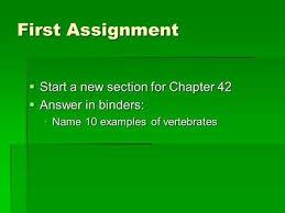 ????? essay ???????????? usa