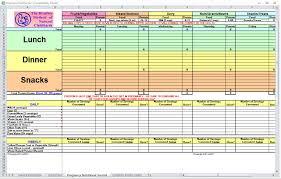 Diet Log Sheets 020 Pregnancy Diet Spreadsheet Template Excel Free Food