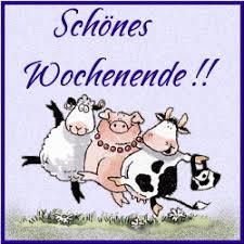 My Favourite Gifs Sprüche I