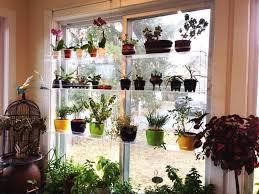 shelf window designrulz cable window shelf dr herbgarden ikea