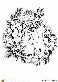 Coloriage Cheval Imprimer Sur Hugolescargot Avec Coloriage