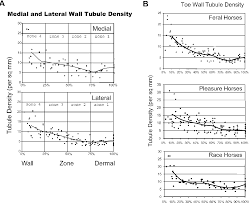 Figure 2 From Equine Hoof Wall Tubule Density And Morphology