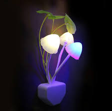 2019 Novelty <b>Mushroom Fungus Night</b> Light EU & US Plug Light ...