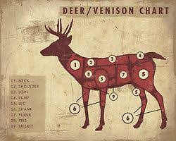 Wild Game Meat Cutting Chart Pin On Homesteading