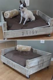 Pet Bed Furniture Foter